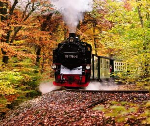 Horski voz